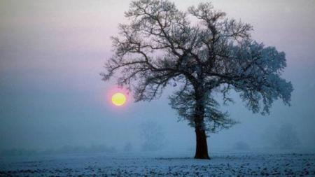 Χειμερινό ηλιοστάσιο: Πότε είναι η μεγαλύτερη νύχτα του Χειμώνα