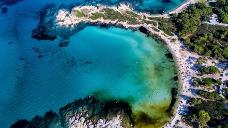 «Καρύδι»: Σε αυτή την παραλία με την ψιλή λευκή άμμο, τα πεύκα φτάνουν μέχρι τη θάλασσα