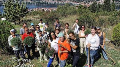 Νέοι από την Ευρώπη φύτεψαν δένδρα στο Άι Θανάση (φωτογραφίες)