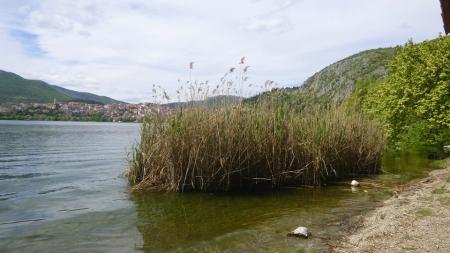 """Καστοριά – Πλαζ: """"Πριν παραγγείλουν τις ξαπλώστρες…""""! (φωτογραφίες)"""