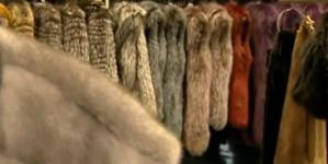 Το πρόγραμμα της εκδήλωσης του Σαββάτου που διοργανώνουν όλοι οι φορείς της γούνας