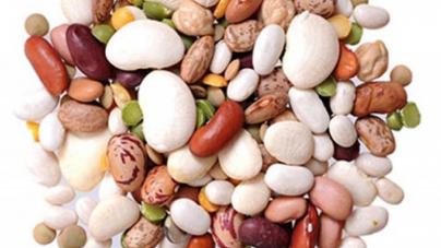 Όσπρια: σταθερές οι εκτάσεις καλλιέργειας σε φασόλια, φακές και φάβα – τα στρέμματα, οι τιμές και πως επηρέασε ο καιρός την παραγωγή
