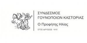 Σύνδεσμος Γουνοποιών Καστοριάς «Ο ΠΡΟΦΗΤΗΣ ΗΛΙΑΣ»: 1ο KASTORIA Fur Festival