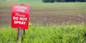 Δήμος Άργους Ορεστικού: Ενημέρωση για τις χρηματοδοτήσεις των βιολογικών καλλιεργειών