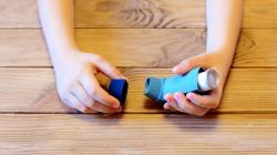 Ελληνίδα ερευνήτρια βρήκε την τροφή που μπορεί να θεραπεύσει το άσθμα -Τι αποκαλύπτει η διεθνής μελέτη