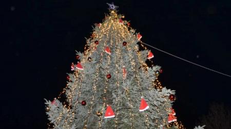 Φωταγωγήθηκε το δέντρο, έλαμψε το Άργος Ορεστικό (φωτο & βίντεο)