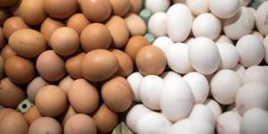 Συμβουλές ΕΦΕΤ για την αγορά αυγών – Τι πρέπει να προσέχετε