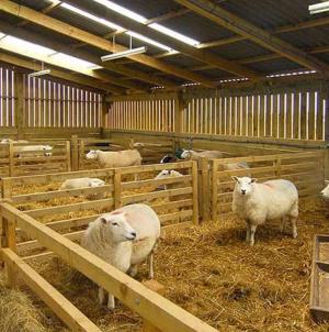 Λειτουργία Κτηνοτροφικών Εγκαταστάσεων-Αίτηση έως 30/06/2019