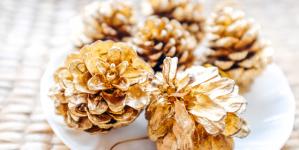 Χριστουγεννιάτικη διακόσμηση: Πώς με τα κουκουνάρια που βρίσκεις στο πάρκο φτιάχνεις εντυπωσιακά στολίδια [εικόνες]