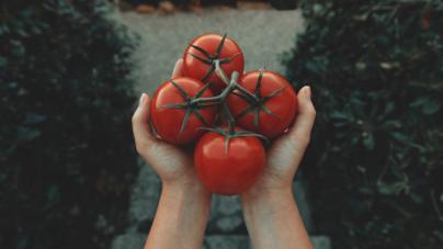 Δεν πρέπει να αποθηκεύεις όλες τις ντομάτες στο ίδιο σημείο