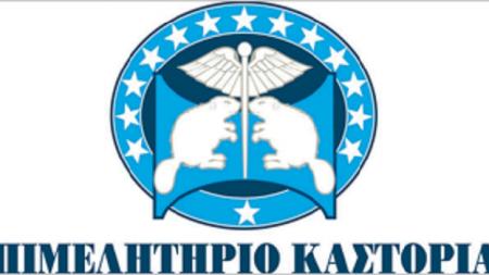 Επιμελητήριο Καστοριάς: Επιδότηση συμμετοχής επιχειρήσεων σε 6 εκθέσεις για το 2020