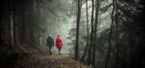 To περπάτημα στη φύση είναι ευεργετικό για το μυαλό, σύμφωνα με έρευνα