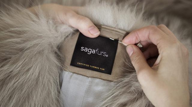 saga-furs.jpg